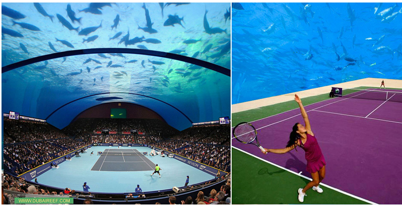 Architect scouts investors for underwater tennis court