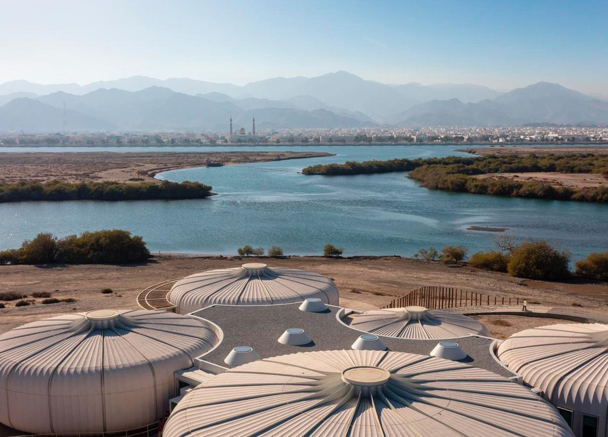 The Khor Kalba Turtle and Wildlife Sanctuary view towards the mangrove forests and mountains
