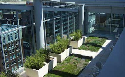 A Washington, D.C., office building incorporates plantings to maximize curb appe