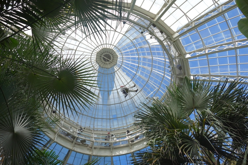 Workers used industrial rope to inspect the interior of the Conservatory's dome.