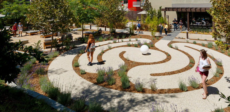 An active outdoor space for students