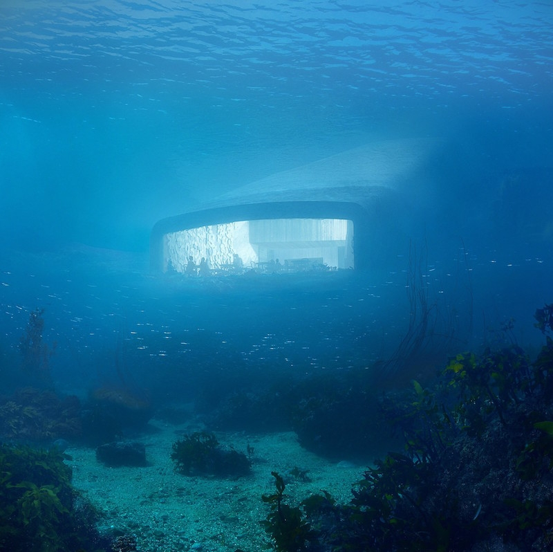 Under resting on the seabed