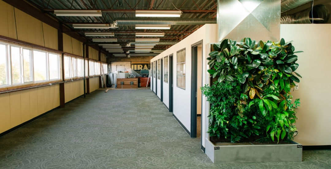 A century-old furniture factory gets a living wall biofilter for better air