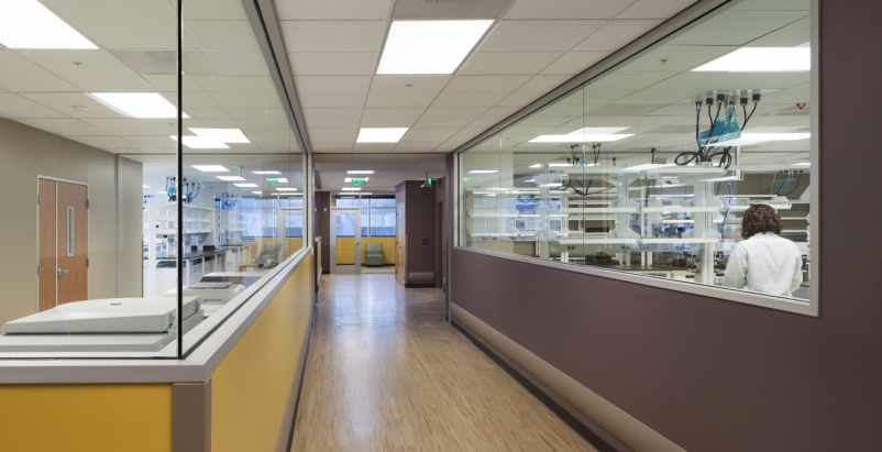 8 tips for converting office space to life sciences labs BioMarin_Novato