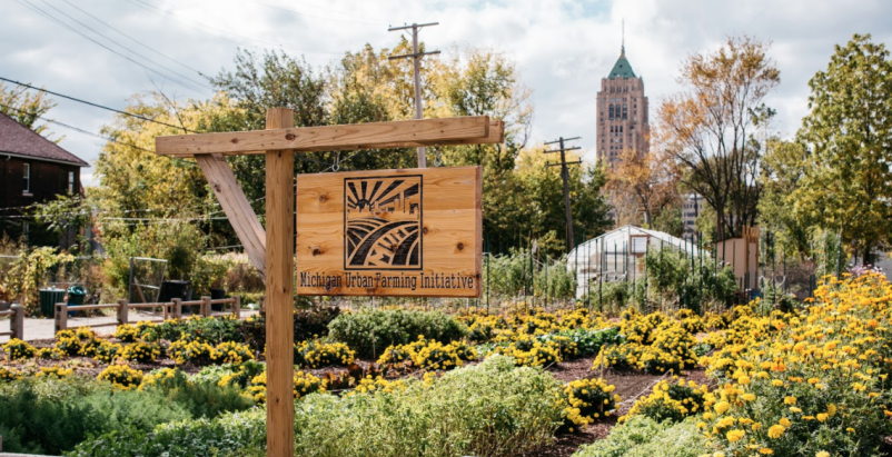 Michigan Urban Farm Initiative