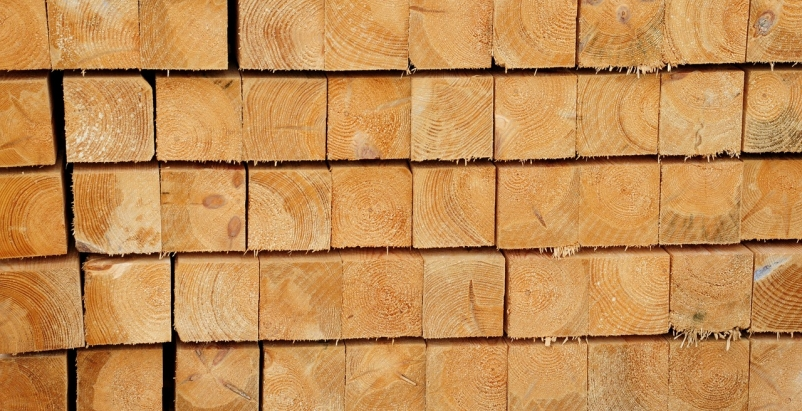 Campaign launched to promote 'climate-smart wood'
