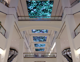 The digital display showing trees swaying in the breeze at 900 North Michigan Shops